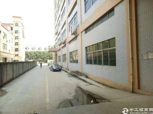 松岗松福大道边一楼6米高整层3700平米带装修-图6