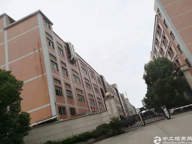 新塘镇层高七米标准厂房