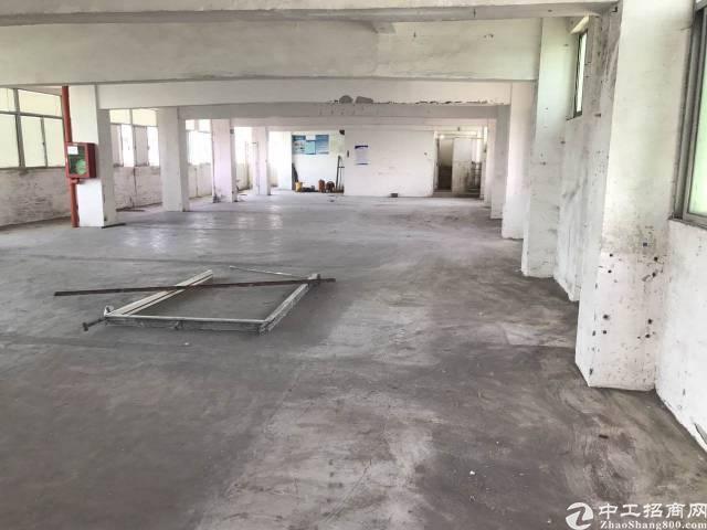 福永  新和5楼厂房出租700平方靠近福永地铁站
