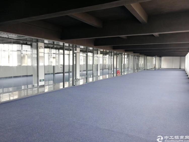 松岗新港城附近全新装修写字楼48平米起出租