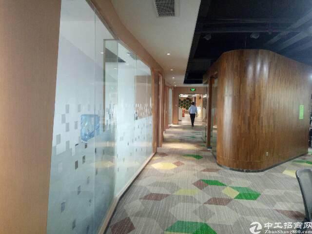 (出租) 深圳新会展门户企业总部办公 写字楼直租图片4