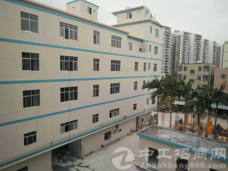 惠州大亚湾工业园花园式标准厂房4600平米招租