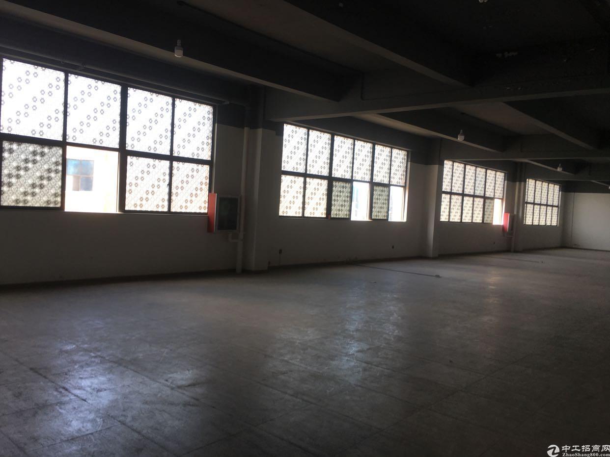 西乡固戍大门旁,每层3300平方出租,租金35元月。