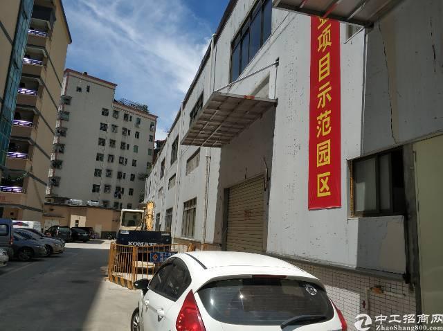 九围村委新建钢构二楼2000平适合仓库