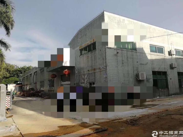 公明塘尾新出钢结构厂房2200平方米
