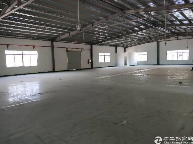 西乡九围新建2000平钢构