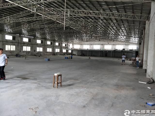 望牛墩新出单一层钢构厂房3500平方招租