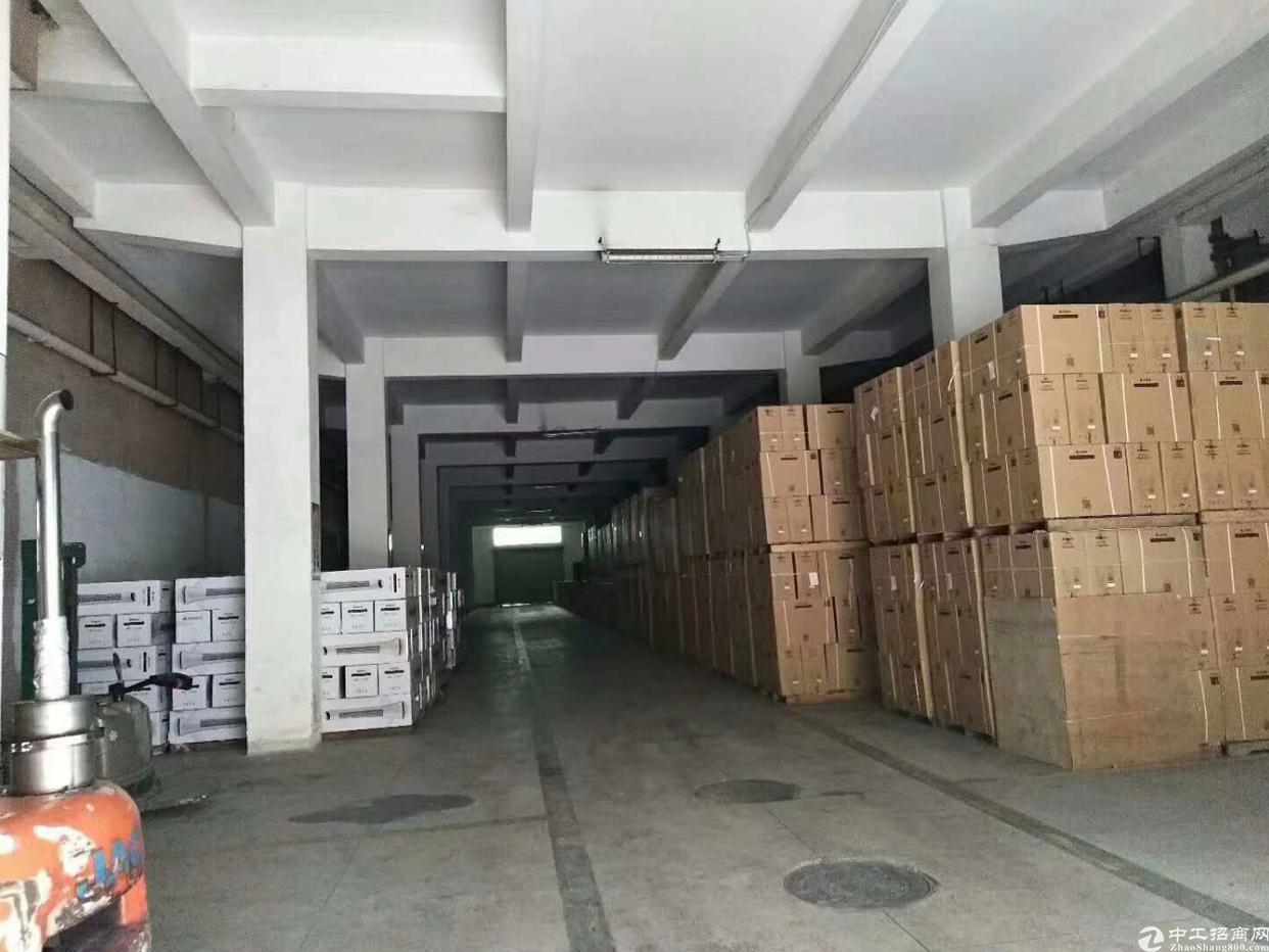 石岩南光高速公路口新出1楼2800平厂房招租-图2