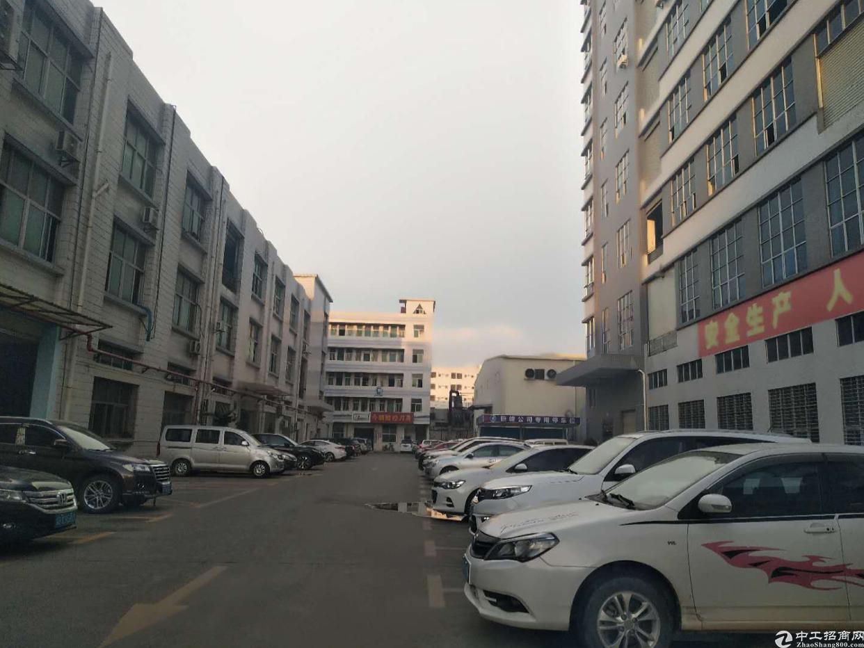 西乡鹤洲恒丰工业城对面1500平方出租,租金28元月。