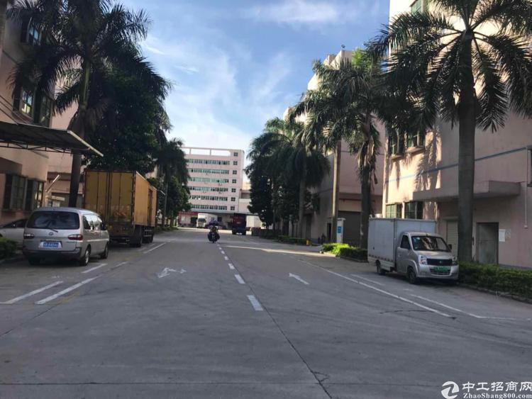 石岩南光高速公路口新出1楼2800平厂房招租