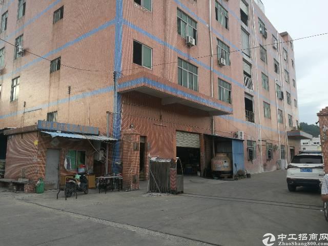 西乡九围村委附近一楼标准厂房900平米出租