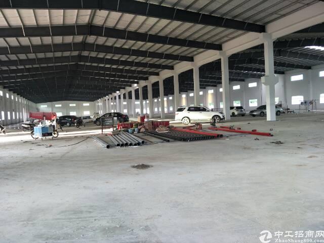 全新一楼厂房