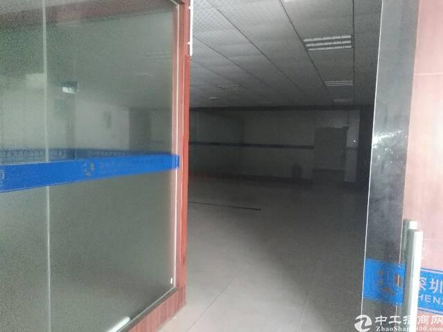 松岗107国道边重工业厂房出租-图5