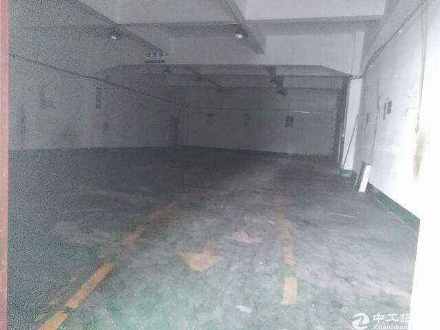 松岗107国道边重工业厂房出租-图2