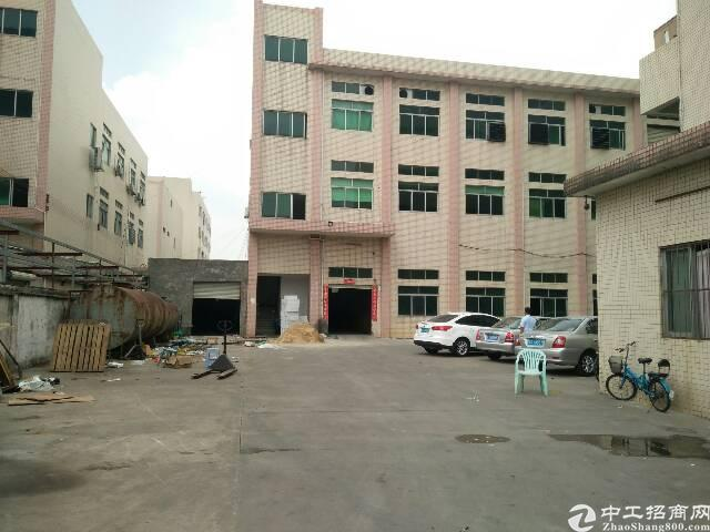 虎门沿江高速附近新出独院厂房4500平方-图2