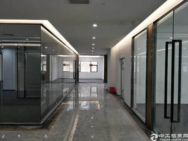 西丽留仙大道旁带精装修写字楼出租面积自由组合200至5800图片7