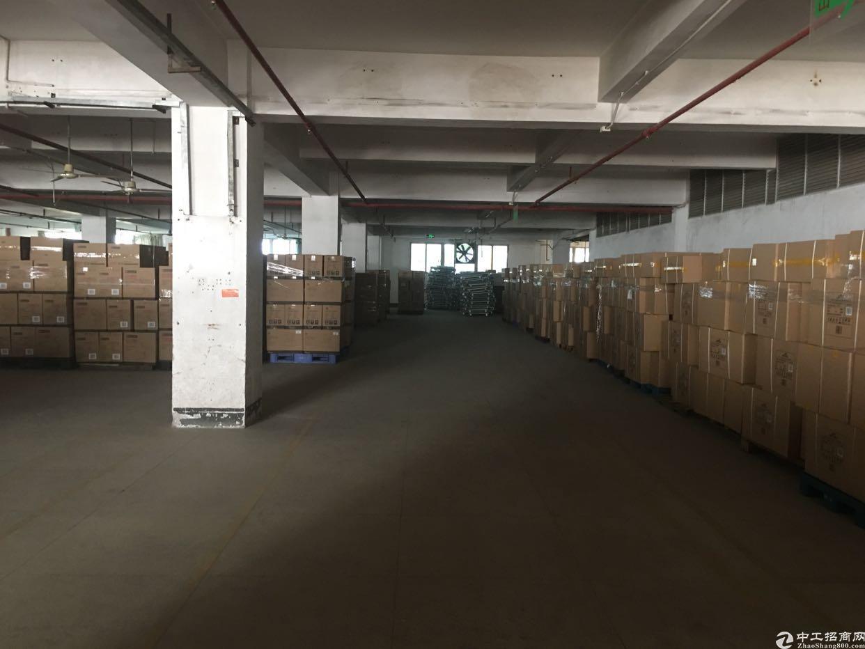 龙华清湖带卸货平台厂房出租