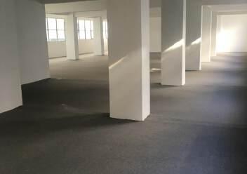 凤凰山脚下,全新厂房出租。图片1