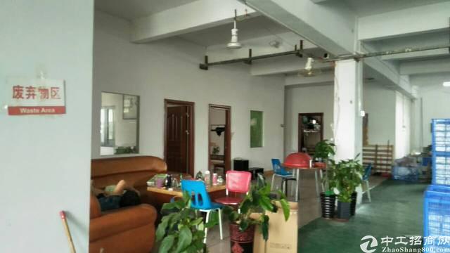 全东莞最便宜的厂房分租三楼500平方