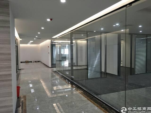 西丽留仙大道旁带精装修写字楼出租面积自由组合200至5800图片5
