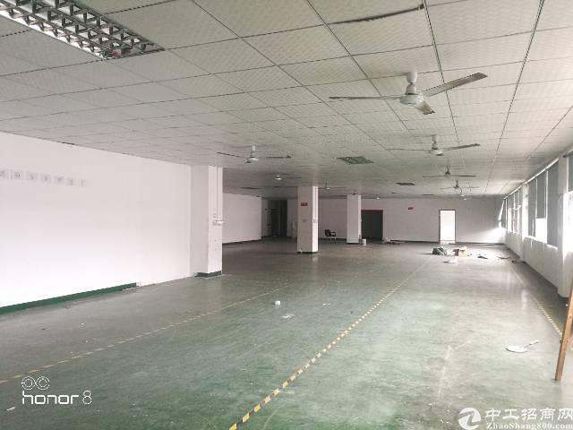 坂田五和大道边地铁口独院带精装修厂房招租