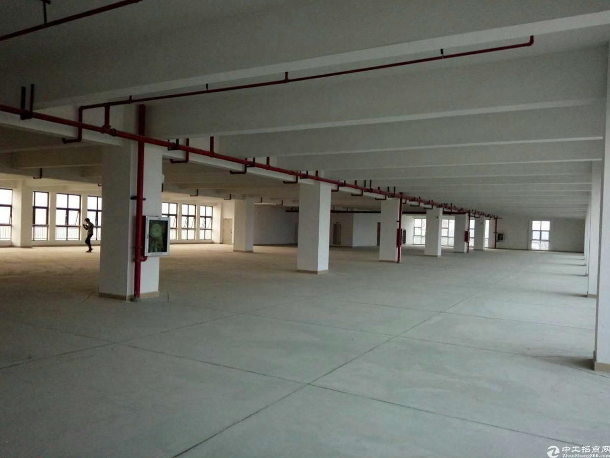 惠阳秋长全新工业园标准厂房单层2100平方出租-图3