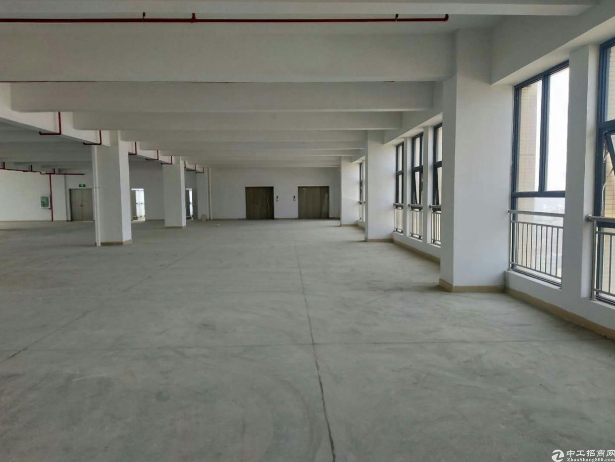 惠阳秋长全新工业园标准厂房单层2100平方出租-图4