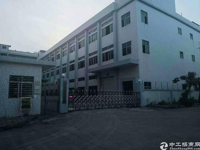 平湖新木一楼6米高带牛角2000平方厂房出租
