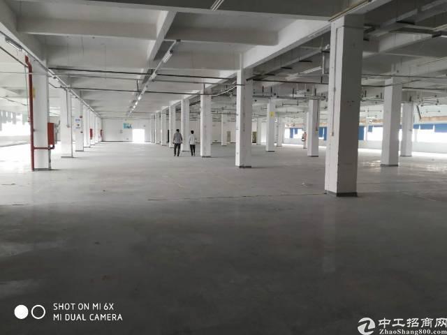 公明新出红本花园式厂房3000平米