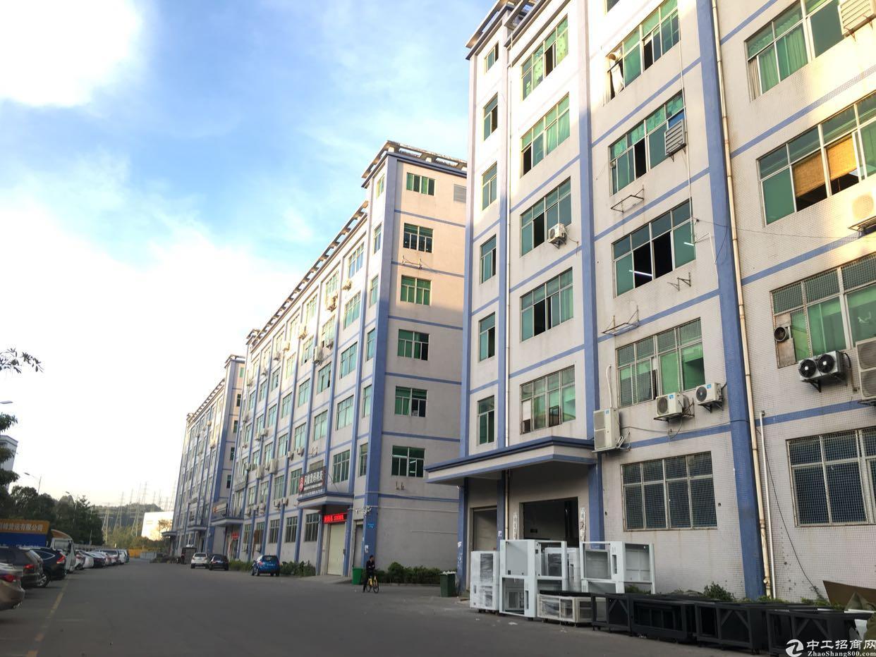 坂田五和地铁站附近新出一楼2380平方可分租