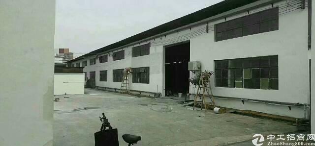 虎门树田独院钢构厂房招租3100平方