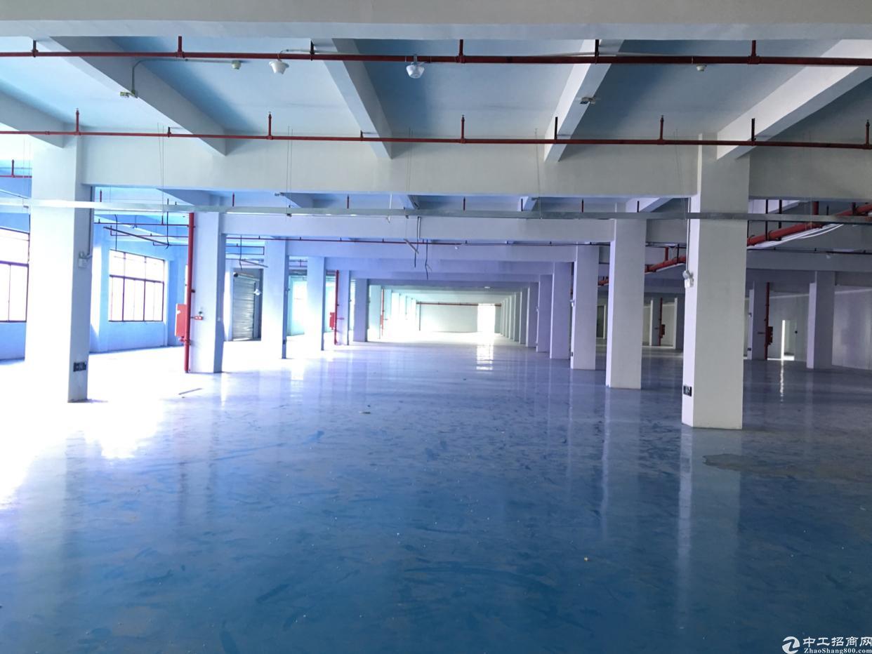 观澜新出红本独院厂房1-2层5000平米