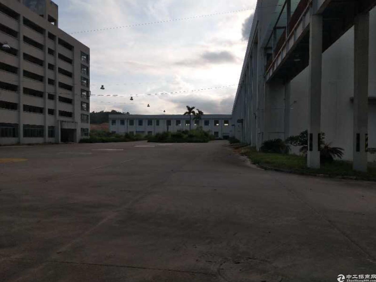 惠州惠阳大亚湾10000平方钢构厂房出租,租金15元月。