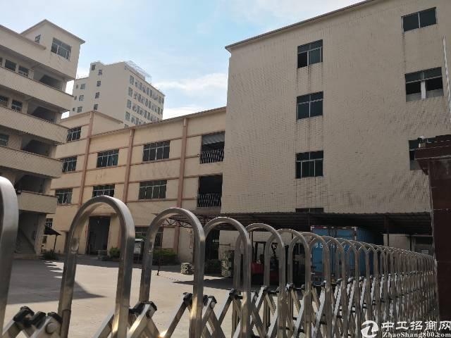 虎门大宁标准厂房出租面积5500平租13元电315kva