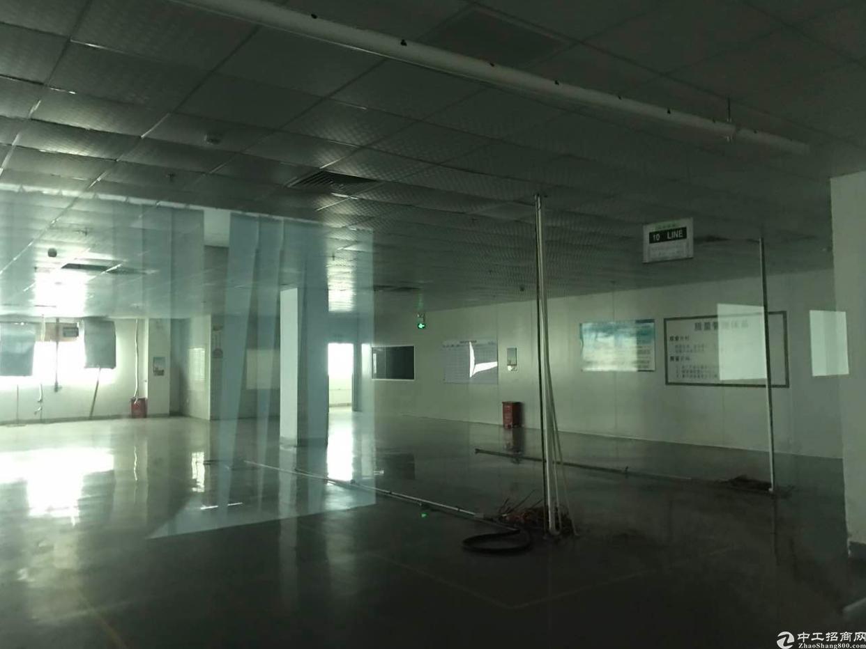仲恺高新区原房东标准厂房5000平可分租