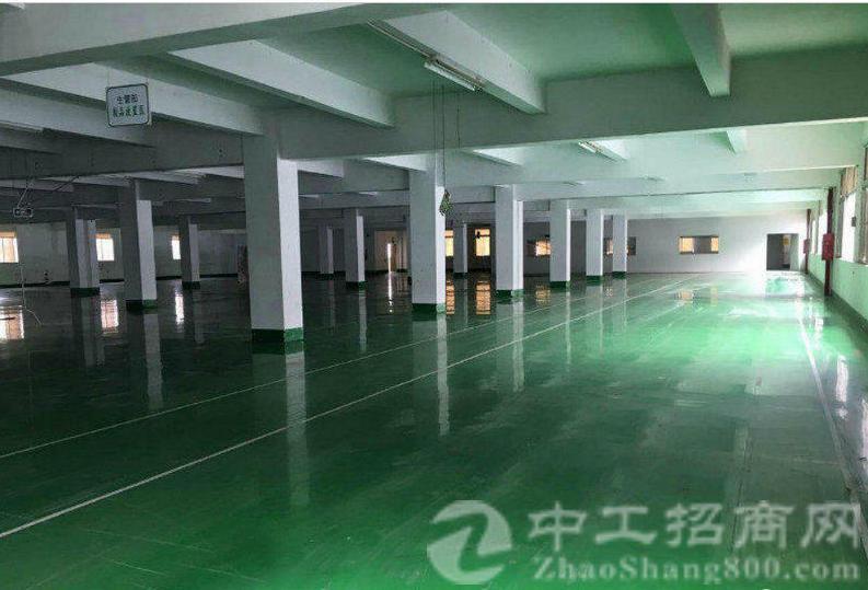 大王山科技园新出3300平米带装修厂房出租、可分租