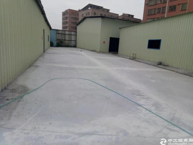新出原房东全新钢结构厂房面积约11000平