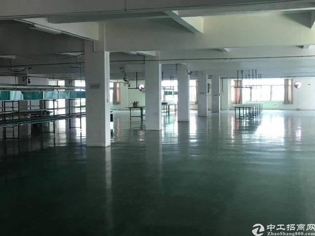 常平新出原房东楼上1500平方,带地坪漆办公室