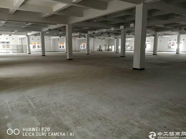 樟木头镇百果洞新出标准厂房一楼
