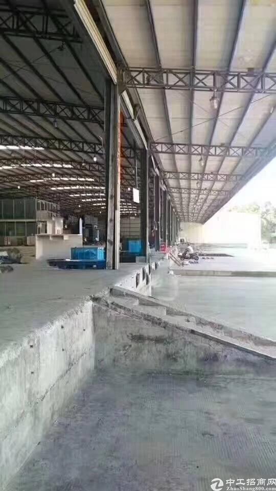四联社区红棉路边物流仓空出3000平可分租可进大货柜价格29