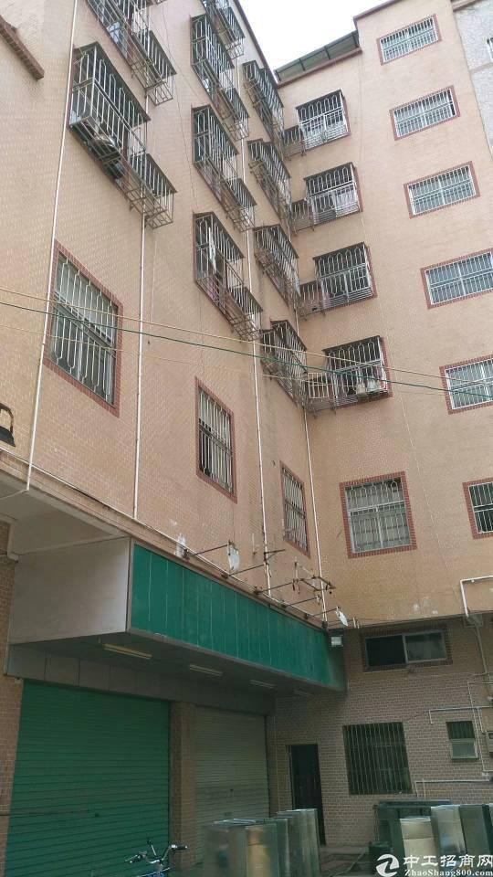 龙岗南联地铁站300米商业盘可以改公寓房1-8层1400平