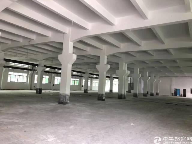 平湖新木一楼6米高带牛角2000平方厂房出租-图2