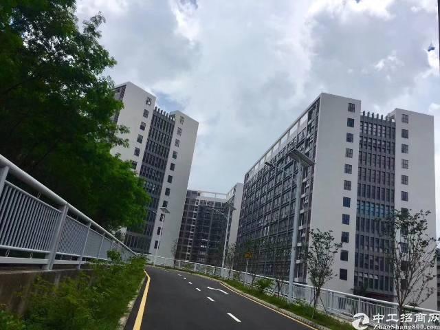江门纳成广泰工业城全新厂房出售16万平方,大小可分