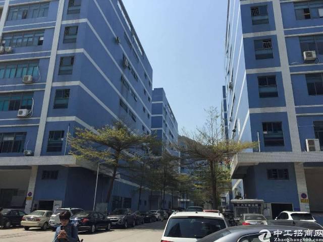 西乡固戍大门  107国道边上新出楼上整层3500平米出租