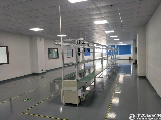 福永凤凰楼上500平米精装修厂房不要转让费出租