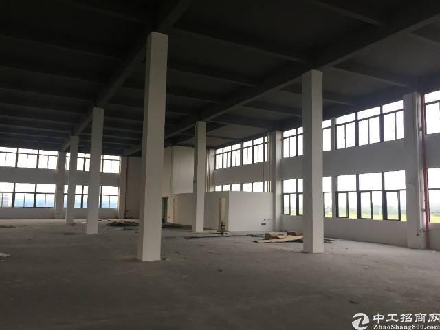 松山湖全新厂房出售