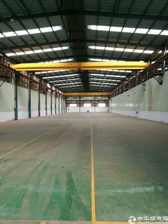 企石占地2000平单一层1600平厂房出售