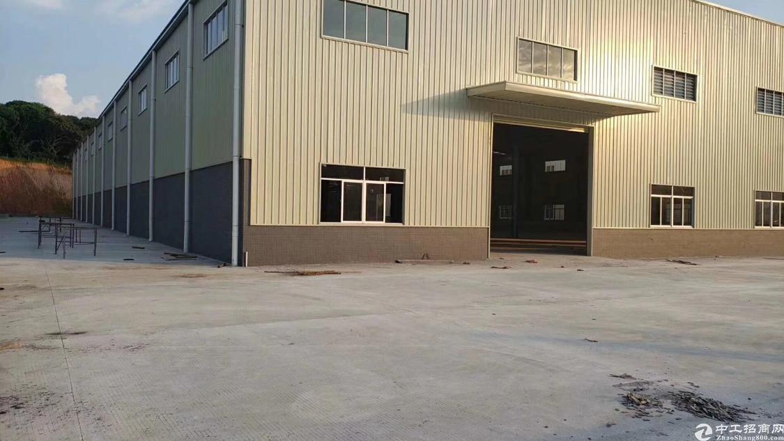 全新12高标准钢构厂房招租