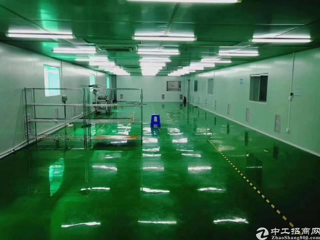 福永龙王庙独院楼上800平全新无尘车间,两间办公室
