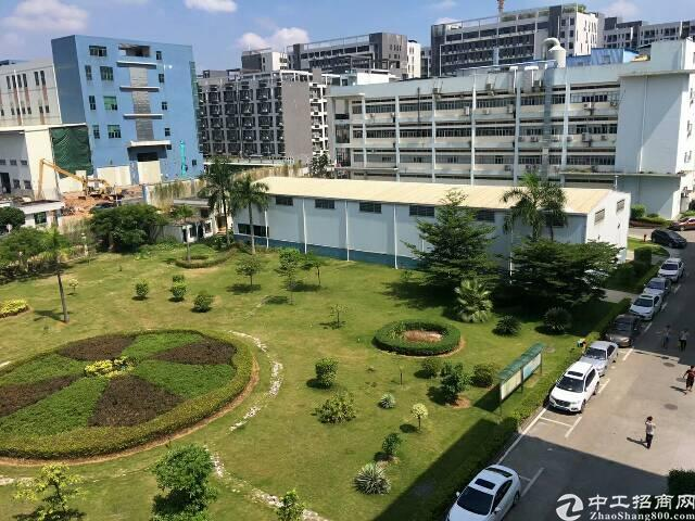 公明绿色办公环境写字楼3200